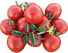 Семена томата Боцман  F1 1000 с. Lark Seeds