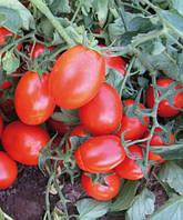 Семена томата CXD 265  F1 5000 н.
