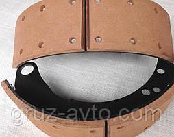 Колодка заднього гальма в зборі ГАЗ-3307/3309/ПАЗ/ 3307-3502090-01