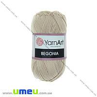 Пряжа YarnArt Begonia 50 г, 169 м, Бежевая 4660, 1 моток (YAR-029694)