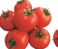 Семена томата Корал  0,25 кг Lark Seeds