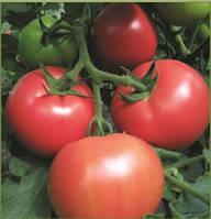 Насіння томату Мелман F1 250 с. Lark Seeds