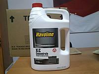 Концентрат антифриза Texaco Havoline XLC Concentrate 0F02, канистра 5 литров
