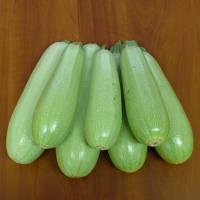 Кабачки Немо F1 0,5кг Lark Seeds