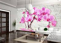 "Фотообои ""Орхидеи на стене"", фото 1"