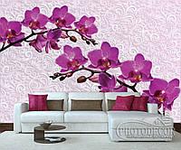 """Фотообои """"Фиолетовые орхидеи и узор"""""""