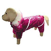 """Комбинезон для собак на силиконе """"Блеск"""" (девочка) подкладка нейлон / Размер М"""