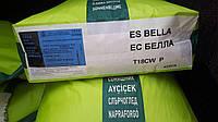 Подсолнечник ЕС БЕЛЛА. Гибрид Euralis (Евралис)