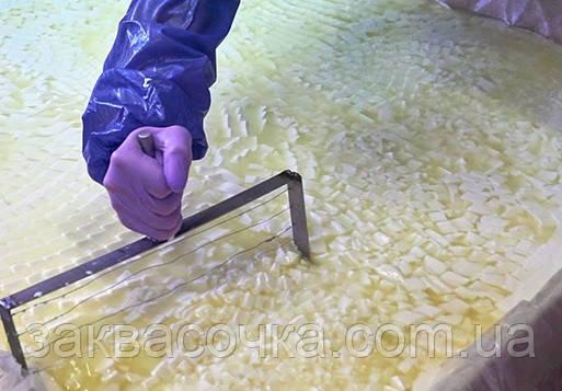 Фермент СУХОЙ,молокосвёртывающий(на 100л молока)