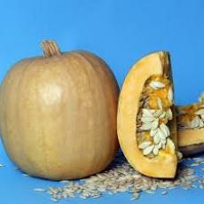 Семена тыквы Болгарка 1 кг