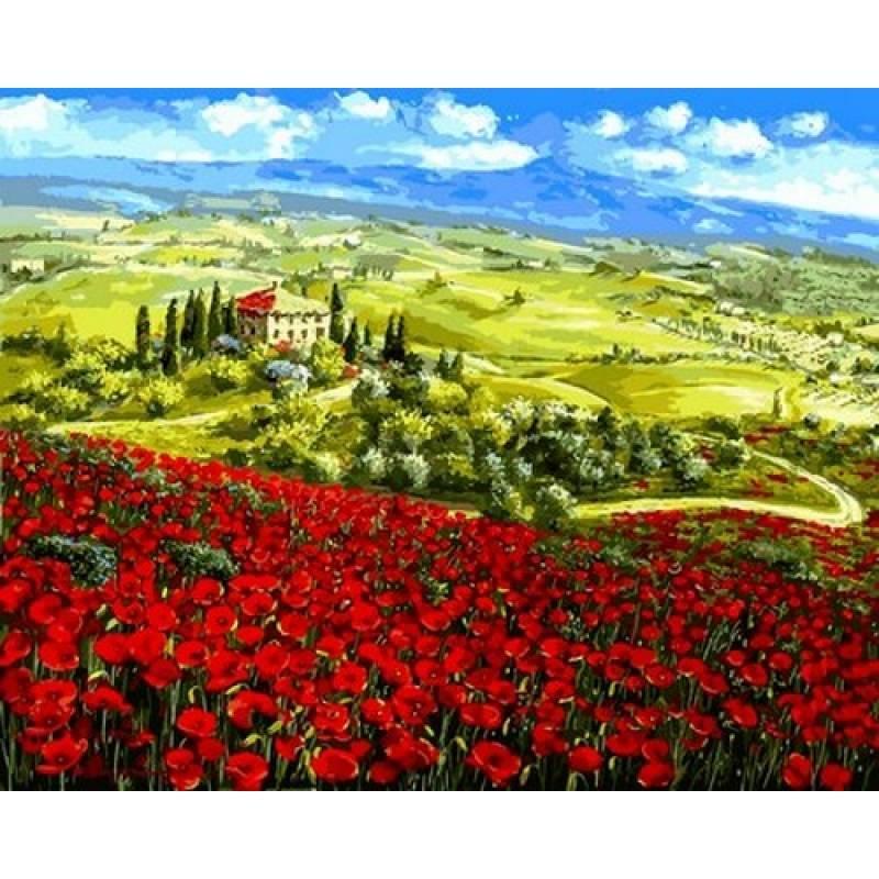 Картина по номерам Мак Тосканы Италия, 40x50 см., Babylon