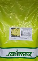 Насіння квасолі овочевої Золота зірка (1кг) Satimex