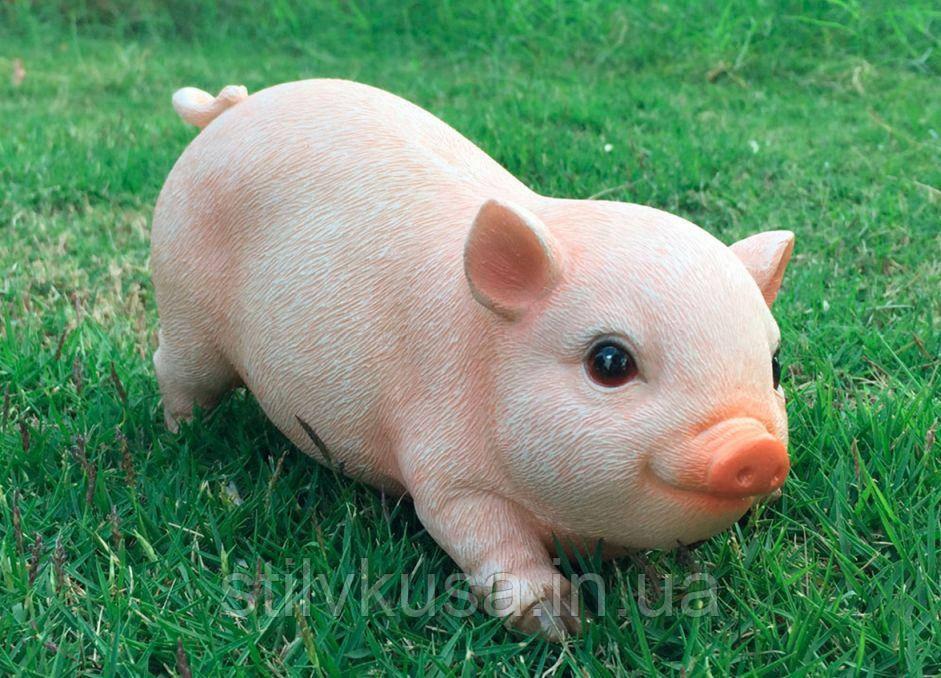 Фігурка декоративна для саду Свинка