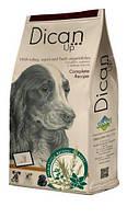 Корм DICAN UP COMPLETE RECIPE (Дикан ап комплит ресип) для взрослых собак с малой активностью (Индейка), 4 кг