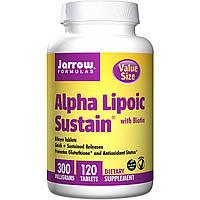 Альфа-липоевая кислота с биотином, Jarrow Formulas, 300 мг, 120 таблеток