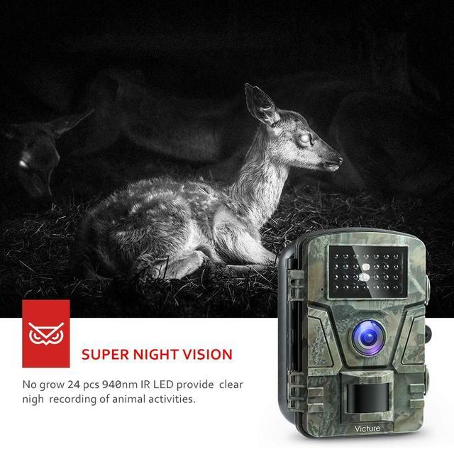 Камера ночного видения для охоты фотоловушка