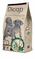 Корм Dican Up Pups (Дикан ап папс) для щенков всех пород и беременных/кормящих сук (курица), 4 кг