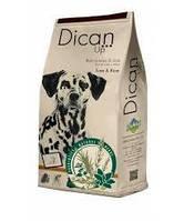 Корм DICAN UP TUNA RICE (Дикан ап туна энд райс) для взрослых собак (тунец/рис), 4 кг