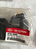 Брызговик задний перед правый киа Спортейдж 3, KIA Sportage 2013-15 SL, 877563w000, фото 2