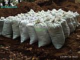 Перегній в мішках Київ Перегній Київська область, фото 3