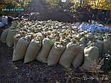 Перегній в мішках Київ Перегній Київська область, фото 5