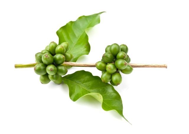зелений кава з ягодами годжі мелений для боротьби із зайвою вагою