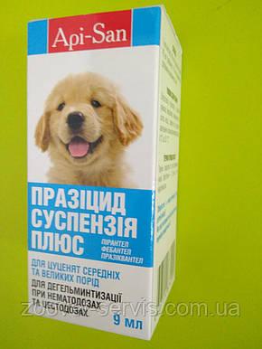 Суспензия антигельминтик для щенков средних и крупных породПразицидПлюс(Api-San) 9 мл, фото 2