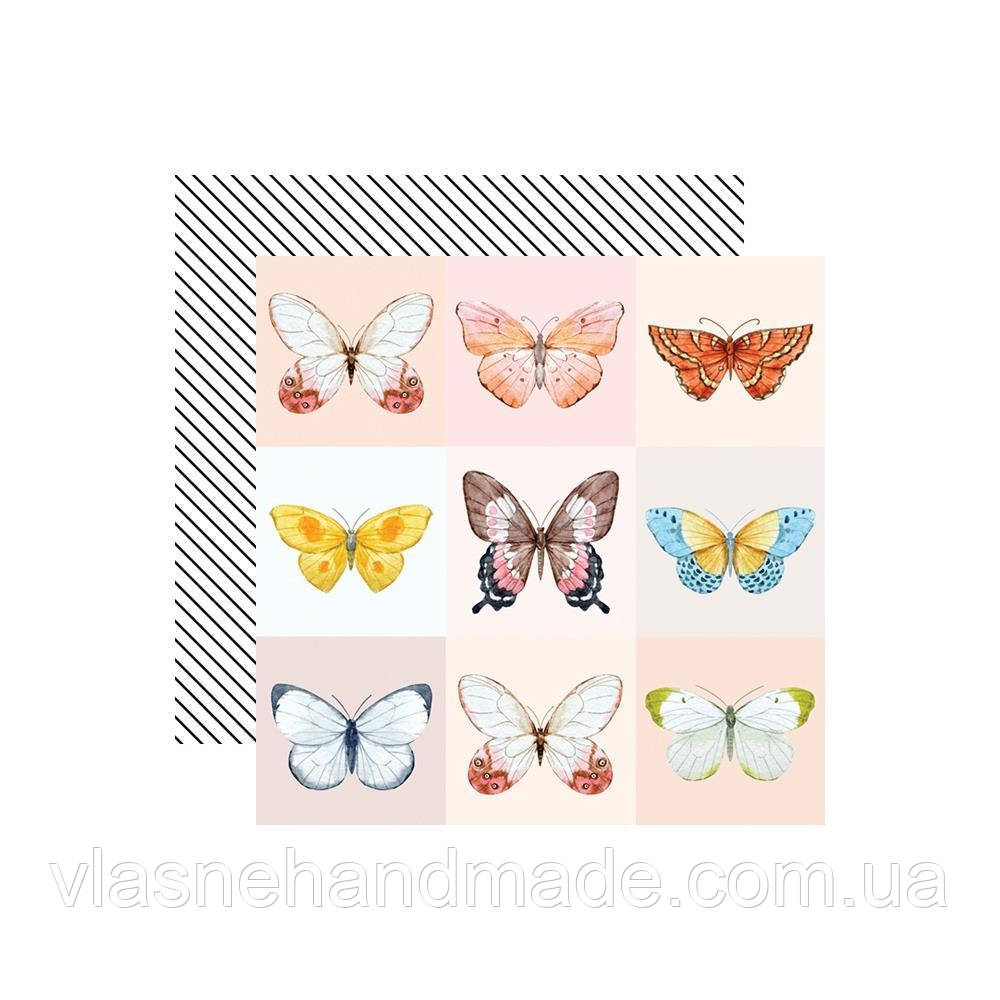 Папір двосторонній - Butterfly - Love Is In The Air - Webster's Pages - 30x30