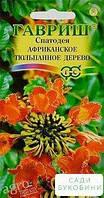 Спатодея 'Африканское тюльпанное дерево' ТМ 'Гавриш' 0.05г