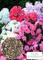 На развес Флокс смесь ТМ 'Весна' цена за 1г
