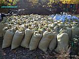 Органическое  удобрение  Перегной в мешках Киев, фото 6