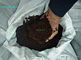 Перегній в мішках Київ та область Гній Перегній купити Київ, фото 4