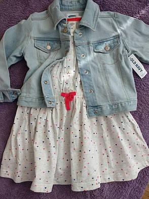 Летнее платье Osh Kosh для девочки, фото 2