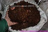 Кінський гній – найкраще добриво-Перегній Київ, фото 5
