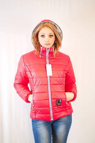 Красивая модная дешевая демисезонная куртка с капюшоном короткая, фото 2