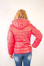 Красивая модная дешевая демисезонная куртка с капюшоном короткая, фото 3