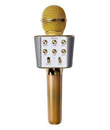 Бездротовий мікрофон-караоке WSTER WS-1688