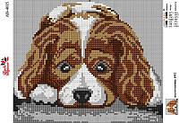 Алмазная вышивка АВ 4015 Собака  (полная зашивка)