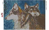 Алмазная вышивка АВ 3005 Волки  (25,3*35,2см)