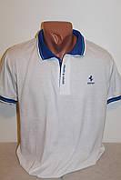 Мужская футболка-поло с воротником