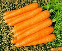 Семена Моркови Романс F1 (1,6-1,8мм) 100 000 семян