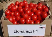 Семена Томат Дональд F1 1000шт