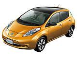 Коврик багажника Nissan Leaf 2012- Stingray, фото 2