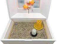 Брудер (ясли) для птенцов Теплуша - 700х500х300