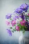 Поздравляем всех женщин с чудесным праздником весны!