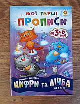 Прописи. Мої перші прописи: Цифри та лічба від 6 до 10 Частина 1 102700 Зірка Украина