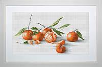 """B2255 Набор для вышивания """"Натюрморт с мандаринами"""""""