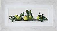 """B2259 Набор для вышивания """"Натюрморт с яблоками"""""""