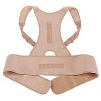 Корсет для спины, ортопедический, Royal Posture, цвет - бежевый, размер XL