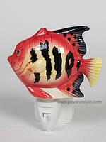 Фарфоровый ночник (светильник) Рыбка Pavone